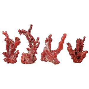 Four Free Form Coral Branches
