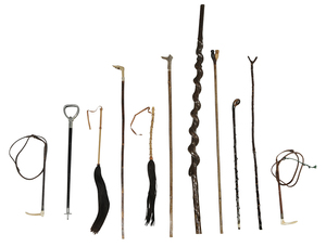 Group of 14 Walking Canes and Crops