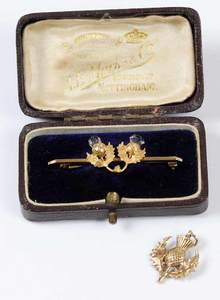 Two Pieces Gold Thistle Jewelry