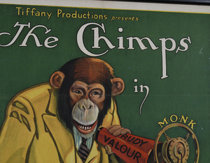 The Chimps in Broadcasting