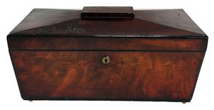 Mahogany Sarcophagus Shaped Tea Caddy