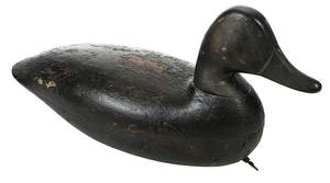 Black Duck Decoy Attributed to Harry Shourds
