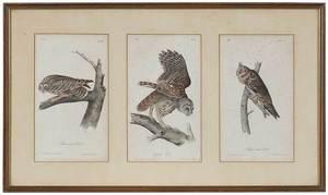 Nine Framed Prints/Paintings/Photograph
