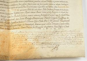 A Maximillian II Document
