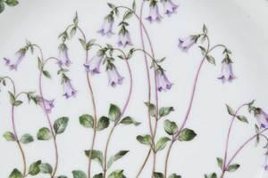 Seven Royal Copenhagen Flora Danica Plates