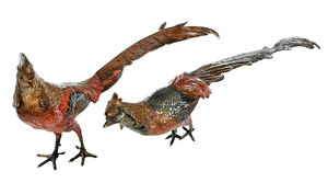 Pair Austrian Cold  Painted Bronze Pheasants
