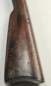 US Springfield Percussion Musket