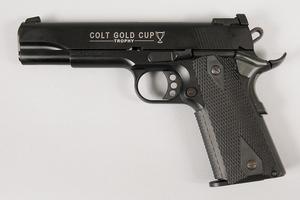 Colt Gold Cup Trophy