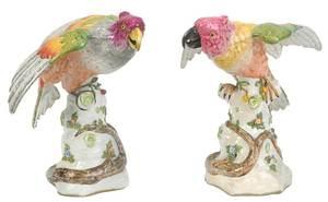 Pair Continental Porcelain Parrots