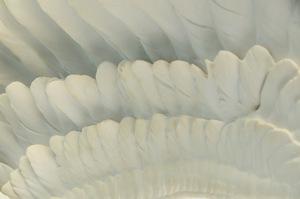 Large Scale Boehm Studios Great White Egret