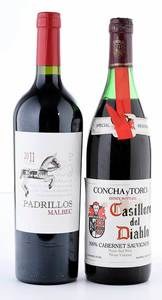 Two Vintage South American Red Wines, Concha y Toro
