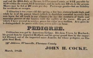 Two Bremo Plantation Horse Broadsides