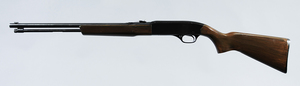 Winchester Model 190 Rifle