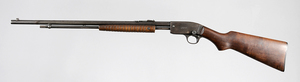 Savage Model 29 Pump Action Rifle