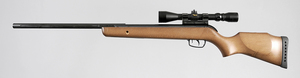Gamo Hunter Sport Air RIfle