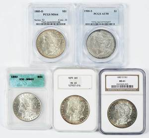 Group of Five Graded Morgan Dollars