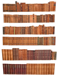 Over 225 Books Foreign Language Library