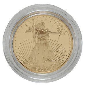 2003-W Half-Ounce Proof American Gold Eagle