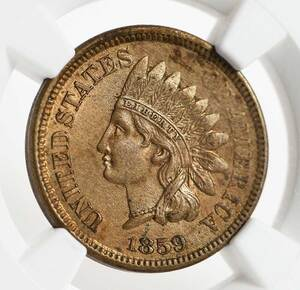 1859 Indian Head Cent Pattern